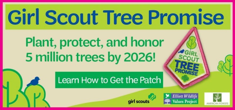 Scout login friend Youth Protection